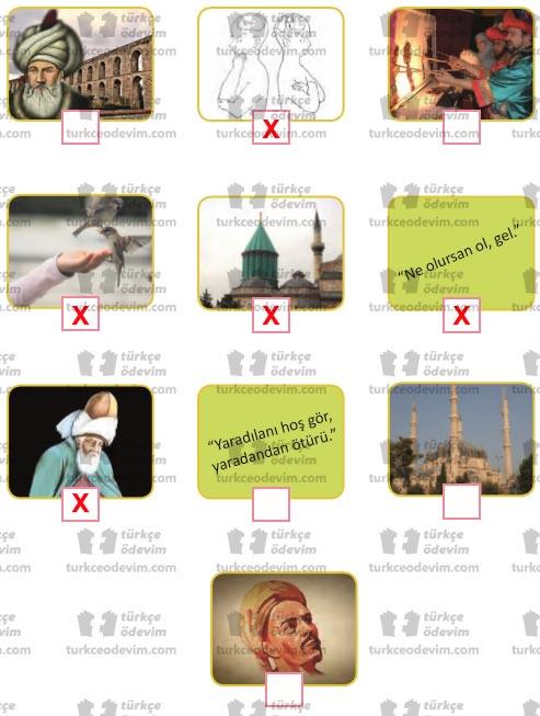 6. Sınıf MEB Yayınları Beri Gel Dinleme Metni Etkinlik Cevapları - Görsel İşaretleme